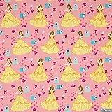 Jersey Stoff Disney Prinzessin Belle Die Schöne und das