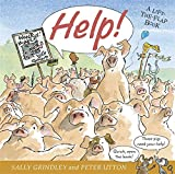 Help!: Lift-the-Flap Book