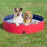 Doggy Pool das Planschbecken für  Hunde (160*30cm) - 4