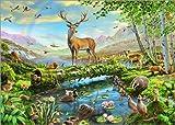 Reproduction sur Toile 40 x 30 cm: 24402 Wildlife Splendor UK de Adrian Chesterman/MGL Licensing - Reproduction prête à accrocher, Toile sur châssis, Image sur Toile véritable prête à accrocher.