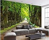 HHCYY Benutzerdefinierte 3D Tapete Wohnzimmer Einfache Und Schöne Große Allee 3D-Tapete-300cmx210cm