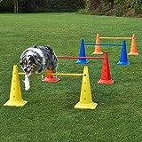 Superhund24 4 x Kombi-Kegelhürde 50 im Set, mit Stange 100 cm, für Agility - Hundetraining