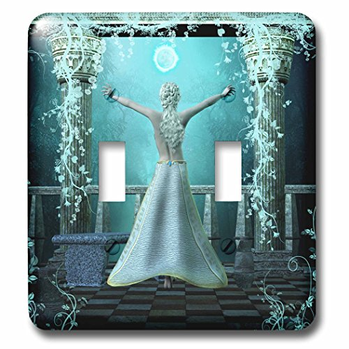 3drose LLC. l.s.p. 254554 _ 2 b072bbkv8t Beautiful Fairy in the night-double Toggle Switch, mehrfarbig