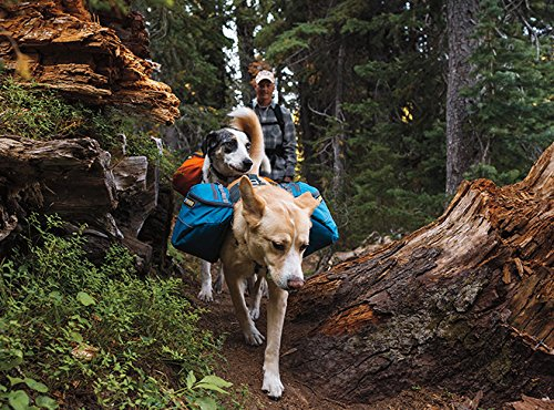 Ruffwear Approach Dog Backpack, Large/ X-Large, Campfire Orange
