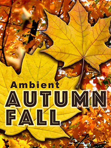 Ambient Autumn Fall