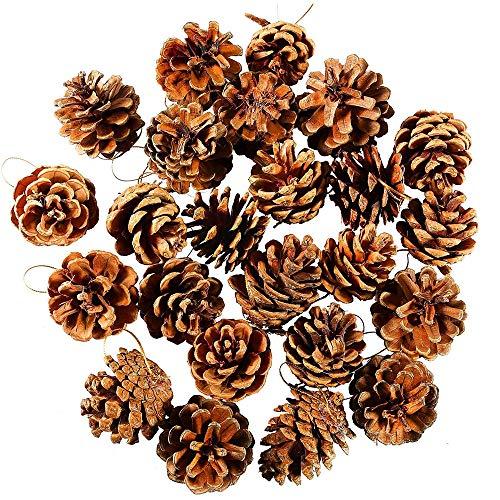 ☃❄Décorations de Noël ☃❄TPulling 24pcs Sapin de Noël cônes Boule de Noel Arbre fête Ornement décoration (Multicolores)
