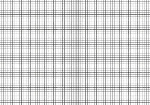 Brunnen 104492811 Schulheft (A4, 16 Blatt, 5 mm kariert, mit Randlinien, Lineatur 28) 10 Stück - 2