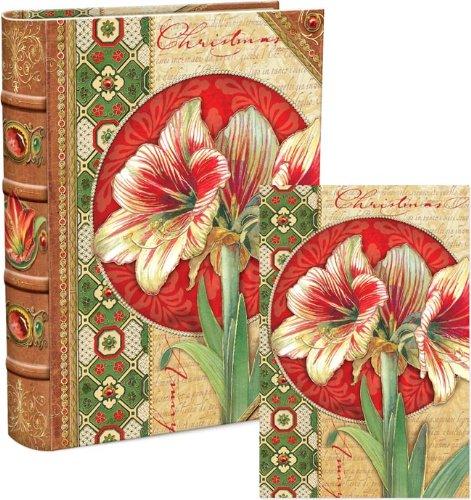Punch Studio 59429 Amaryllis Holiday Notizkarten in Erinnerungsschachtel (18 Karat) -