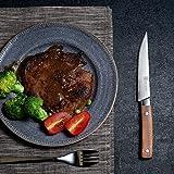 PAUDIN Steakmesser Set 4-teilig, hochwertige scharfe Messer Wellenschliff Steakmesser aus deutschem rostfreiem Edelstahl mit Ergonomischem Griff - 2