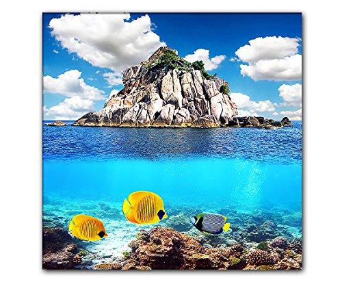DEINEBILDER24 - Wandbild XXL Quadrat kleine bunte Fische an Wassergrenze, Steininsel 80 x 80 cm auf...