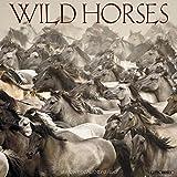 #6: Wild Horses 2018 Wall Calendar