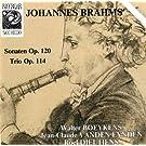 Brahms: Sonaten Op. 120 & Trio Op. 114