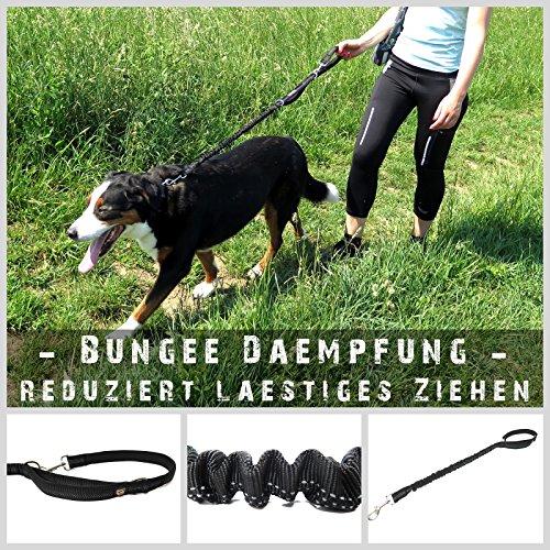 Sportliche HUNDE-LEINE mit elastischer Ruckdämpfung & soften Neopren Handschlaufen | Premium-Qualität | 2-stufig einstellbar | Sicherheits-Reflektoren | 2 Gratis Booklets | Pets'nDogs - 6