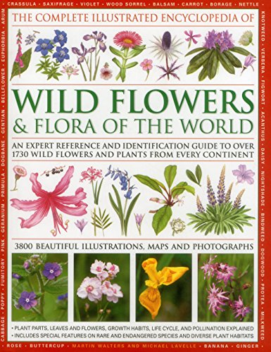the-complete-illustrated-encyclopedia-of-wild-flowers-flora-of-the-world-an-expert-reference-and-ide
