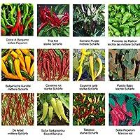 Samen - Saatgutsortiment - Set - Mix - Mischung - Peperoni - Chilis von mild bis scharf - 12 Sorten á 10 Samen