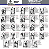 MARCY Heim-Gym Multipresse mit Hantelbank Smith-Maschine, Schwarz, One Size - 2
