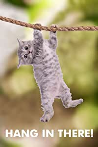 Hang In There! Cat Retro Motivational Poster 30x46 cm inch ...