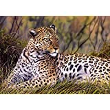Schmidt King of the Savanna Jigsaw Puzzle (1000 Pieces)
