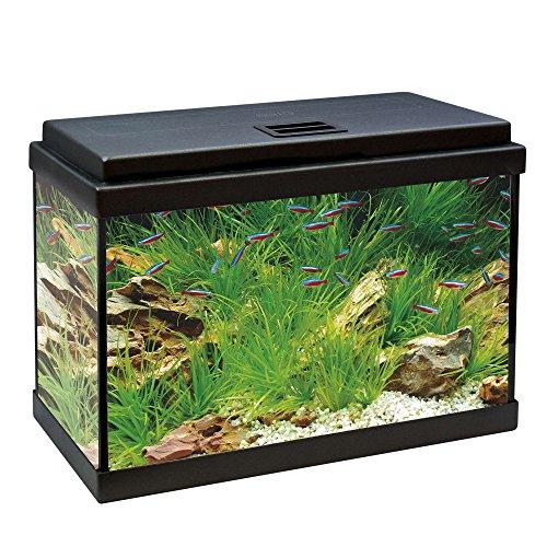 ICA KDI40 Kit Aqua-Led 40 con Filtro Interior