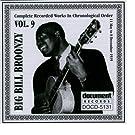 Big Bill Broonzy Vol. 9 1939