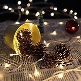 HJ® 40M 400LEDs 31V Blanc Chaud LED Guirlande lumineuse Décor Chambre Maison Jardin Terrasse Pelouse Xmas