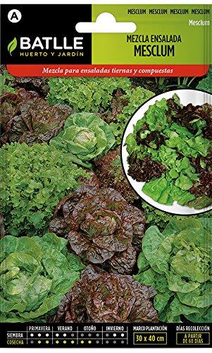 Batlle Gemüsesamen – Salatmix Mesclum (6400 Samen)