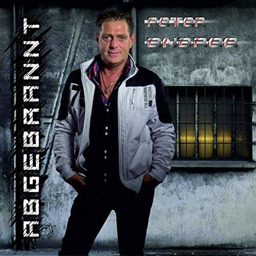 Peter Andree - Abgebrannt