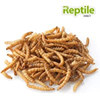 Mealworms 18-26mm Approx 60g Tub
