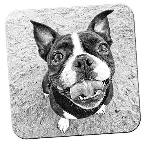 Boston Terrier Boston Bull-Sottobicchiere in legno di bosso, Confezione 4 sottobicchieri, Smiling Happy Boston Terrier, 2 x Coaster