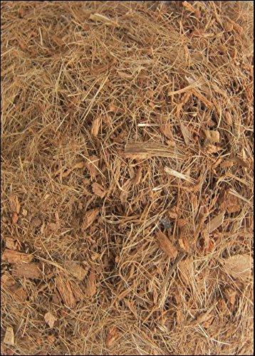 ORGANIC SUBSTRATE SOIL BEDDING FOR TARANTULAS, SPIDER TANK, ENCLOSURE, VIVARIUM, TARANTULA VIVARIA (SPECIAL PACK FOR… 5