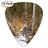 Bengal Tiger In Snowy Jungle Hunting And Cruising For Prey Furry Majestic Mammal Guitar Picks 12/Pack