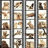 murando - PURO TAPETE - Realistische Tapete ohne Rapport und Versatz - Kein sich wiederholendes Muster - 10m Vlies Tapetenrolle - Wandtapete - modern design - Fototapete - Tiere Katze Hund Pferde Schwein Kaninchen g-C-0026-j-c