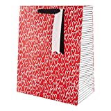 Multi-Occasion Red & White Hearts Gift Bag from Hallmark - Valentine's Day, Birthday