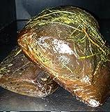 1 kg - Musciame di tonno, affumicato ed essiccato con un trattamento simile ai salumi magri. L'artigiano produttore è Pino Spanu, un abile produttore di bottarga di muggine di Cabras.