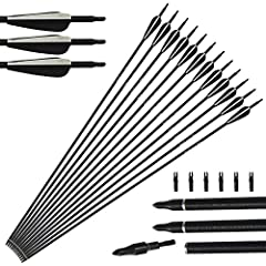 Idea Regalo - 12 pacchetti arco di riciclaggio del complesso delle frecce di vetro tiro con l'arco 31 pollici