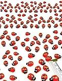 HomeTools.eu® - 100 Stück, Lustige Bunte Marien-Käfer Glücksbringer 3D Holz-Figuren Sticker selbst-klebend, Aufkleber, echt Holz, bemalt, 100er Pack