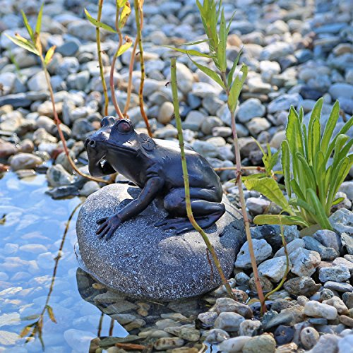 CLGarden Wasserspeier Figur Frosch auf Stein für Gartenteich Brunnenbecken Dekofigur Wasserspiel Teich