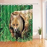 GoHEBE Fuchs-3d-Druck, aus Holz, Baum, Duschvorhang aus Polyester, wasserdicht, 71cm, Haken im Lieferumfang enthalten