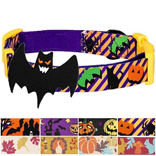 Blueberry Pet Feiertags-Halsbänder 2,5cm L Halloween Wahnsinn Party Klassisches Designer Hundehalsband mit Abnehmbarer Deko (Party Supplies Hamilton)