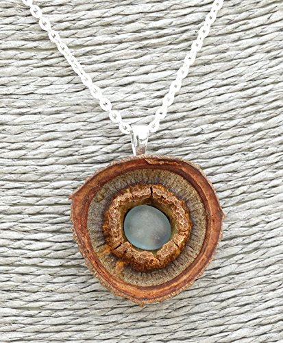Pendant made of EUCALYPTUS Pod and rough TOPAZ + Sterling Silver necklace