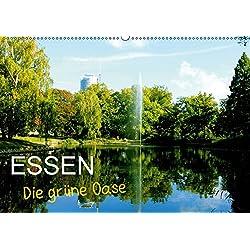 Essen - Die grüne Oase (Wandkalender 2019 DIN A2 quer): Essen, die Metropole im Herzen des Ruhrgebietes zeigt ihr grünes Gesicht und lässt viele ... (Monatskalender, 14 Seiten ) (CALVENDO Orte)