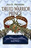 Druid Warrior Prince (Celtic Stewards Chronicles Book 3) by Juli D. Revezzo front cover