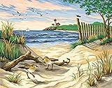 16X20 Zoll DIY Malerei Wandmalerei Malen auf Leinwand Startseite Dekorative Kunst Bild Rahmenlose Schönheit des Strandes