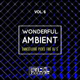 Wonderful Ambient, Vol. 6 (Dancefloor Picks For DJ's)