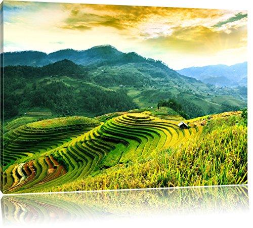 Reisfelder in Vietnam, Format: 100x70 auf Leinwand, XXL riesige Bilder fertig gerahmt mit Keilrahmen, Kunstdruck auf Wandbild mit Rahmen, günstiger als Gemälde oder Ölbild, kein Poster oder Plakat
