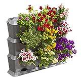 GARDENA NatureUp! Kit de jardin vertical: mur végétal pour la végétalisation verticale de balcons / terrasses / cours intérieures, kit de base de 9 plantes, résistant aux intempéries (13150-20)