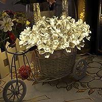 Lychee 4m 40 LED Battery Operated Blossom Fairy luci della stringa per Outdoor Wedding dell'interno Garden Home decorazione della festa di Natale (Bianco Caldo) - 2 Pulsante Di Alimentazione Finestra Interruttore