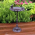 Natures Market BFCAST1 Cast Iron Standing Bird Bath, Transparent, 22.3 x 29 x 6.2 cm from Bonnington Plastics