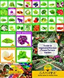 #7: Sahaya 36 Varieties Of Organic/Hybrid Seeds Combo Kit For Healthy Plants With Instruction Manual (1685 Seeds)