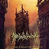 Songtexte von Near Death Condition - Evolving Towards Extinction